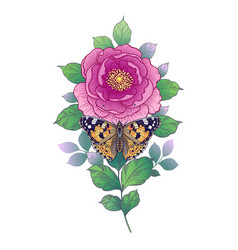 hand drawn pink flower and butterfly vector image