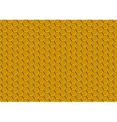 Honeycomb Texture vector