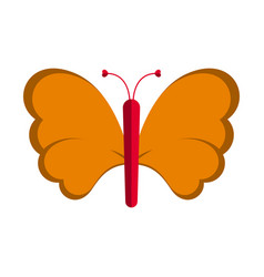 isolated cute butterfly vector image