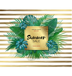 Sale round summer sale tropical leaves frame on vector