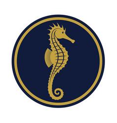 seahorse golden vector image