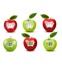 Set of apples with weight scales Diet concept vector image