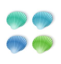 set scallop seashells seashells cartoon vector image