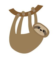 Sloth hanging on tree branch icon cute cartoon vector