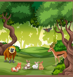 wild animal in forest vector image