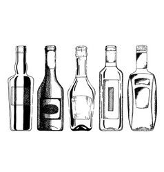 wine bottle set vector image