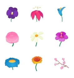 Types of flowers icons set cartoon style vector image vector image