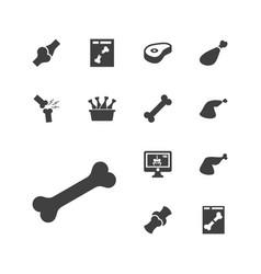 13 bone icons vector