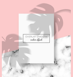 a4 card mockup with shadow overlays on top and vector image