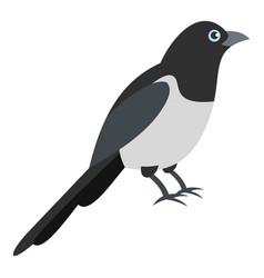 Garden magpie icon flat style vector