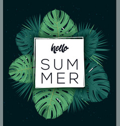 hello summer poster tropic leaves tropic vector image