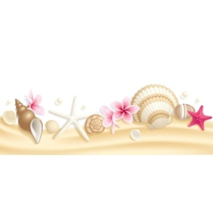 seashell header vector image
