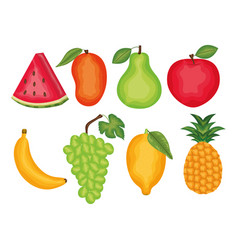 set fresh fruits tropical icons vector image