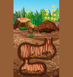 Underground animal hole with many talpidaes vector