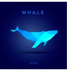 Whale Lowe roles polygons vector image