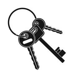 a bunch of keys from the cells in the prison keys vector image vector image
