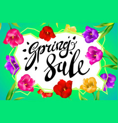 spring sale banner colotful tulips flowers green vector image