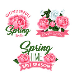 springtime roses bunches of greeting quotes vector image