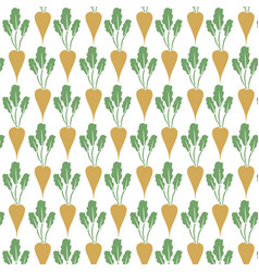 background pattern with sugar beet vector image