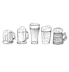 beer glasses and mugs set vector image