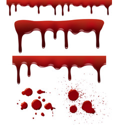 Blood splashes red dribble drops bloodstain vector
