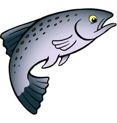 cartoon of a salmon or trout fish vector image