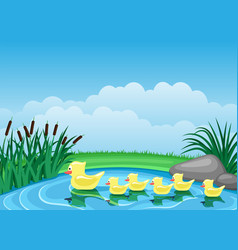 Cute ducks swimming on pond vector