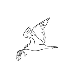 Doodle seagull with fish vector
