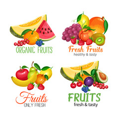 Fruits banners vector