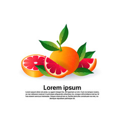 grapefruit on white background healthy lifestyle vector image