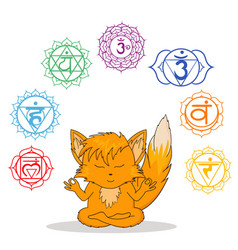 picture fox meditating vector image