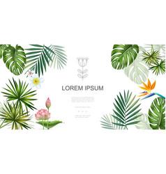 realistic tropical plants floral concept vector image
