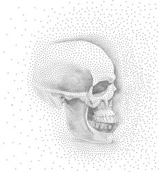 Skull in profile on white background simple vector
