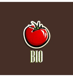 vintage with a red tomato vector image