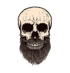 bearded skull on white background design element vector image vector image