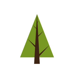 abstract tree spruce plant icon with brown trunk vector image vector image