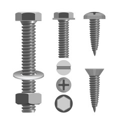 bolts and nuts with different screw heads types vector image vector image