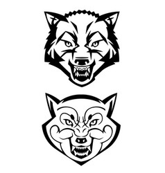 wolfs heads showing teeth vector image