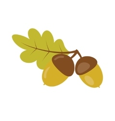 Acorns with green leaf vector image vector image