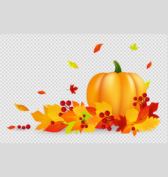 autumn background thanksgiving banner vector image