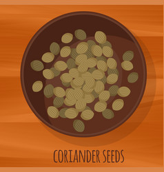 coriander seeds flat design icon vector image