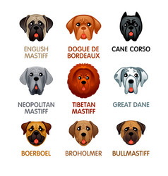 Cute dog icons set iii vector