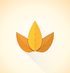 Flat threesome tobacco leaf icon vector