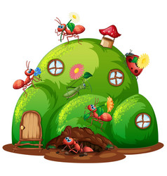 Hill house with many insects on house vector