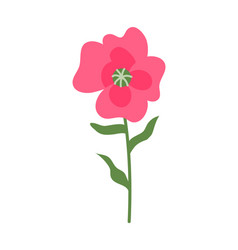 pink flower on thin stable flora decoration icon vector image