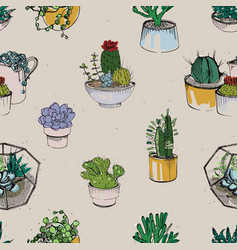 Seamless with various hand drawn succulent and vector