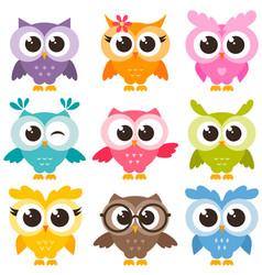 set of colorful funny owls isolated on white vector image