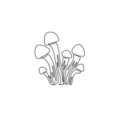 single continuous line drawing whole healthy vector image