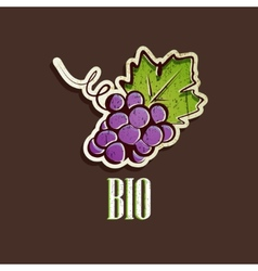 Vintage with grapes vector