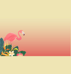 flamingo bird design on white background vector image